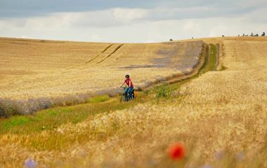 Mecklenburger Seenplatte: Ein Paradies für Radfahrer und Wanderer